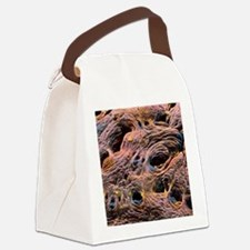 Coloured SEM of intestine, showin Canvas Lunch Bag