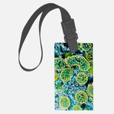 Coloured SEM of mitochondria in  Luggage Tag