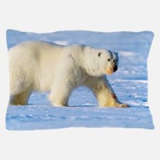 Polar bear Pillow Case