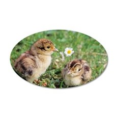 Pheasant chicks 35x21 Oval Wall Decal