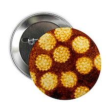"Coloured TEM of Papilloma viruses 2.25"" Button"