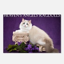Ragdoll Cat Wall Calendar Postcards (Package of 8)
