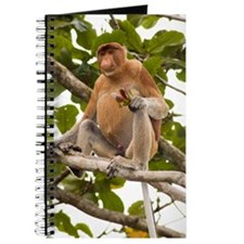 Proboscis monkey Journal