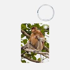 Proboscis monkey Keychains