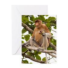 Proboscis monkey Greeting Card