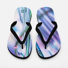 Pipettes Flip Flops