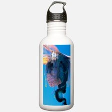 Portuguese man-of-war Water Bottle
