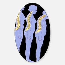 Computer artwork of woman developin Decal