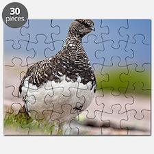 Ptarmigan Puzzle