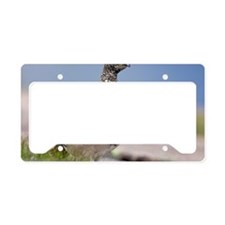 Ptarmigan License Plate Holder