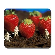 Concept of genetically engineered strawb Mousepad