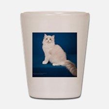 Ragdoll Cat Wall Calendar Shot Glass
