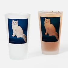 Ragdoll Cat Wall Calendar Drinking Glass