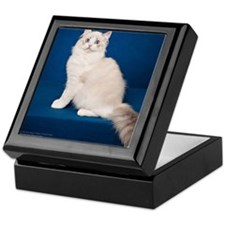 Ragdoll Cat Wall Calendar Keepsake Box