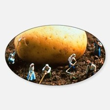 Conceptual image of genetically eng Sticker (Oval)
