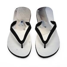 Polar bear and cub Flip Flops