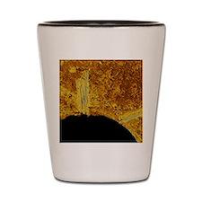 Dirty plughole Shot Glass
