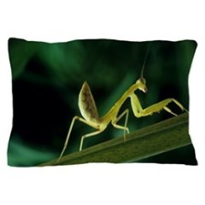 Praying mantis Pillow Case