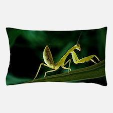 Praying mantis Pillow Case