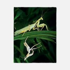Praying mantis with its shed skin Twin Duvet