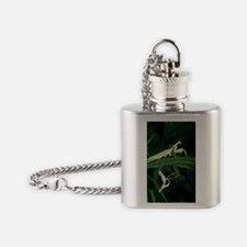 Praying mantis with its shed skin Flask Necklace