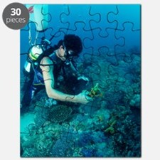Diver collecting samples Puzzle