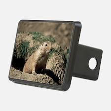 Prairie dog Hitch Cover