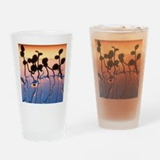 Cultured cress seedlings Drinking Glass