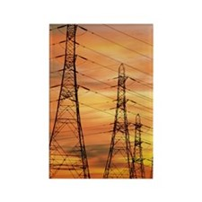 Pylons carrying electricity wires Rectangle Magnet