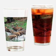 Red deer herd Drinking Glass