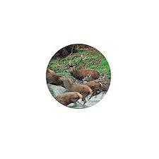 Red deer herd Mini Button