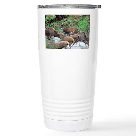 Red deer herd Stainless Steel Travel Mug