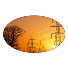 Pylons and power lines at sunset Decal
