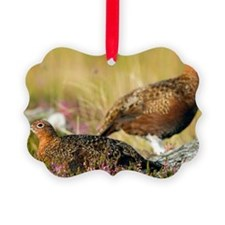 Red grouse Ornament