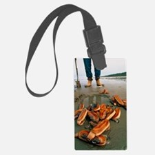 Razor clams dug up on a beach Luggage Tag