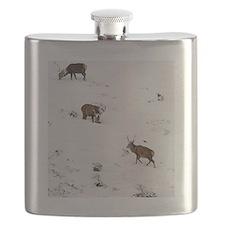 Red deer stags Flask