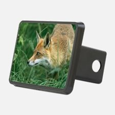 Red fox hunting Hitch Cover