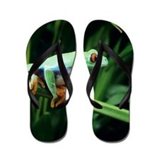 Red-eyed tree frog Flip Flops