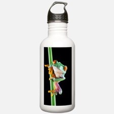 Red-eyed tree frog Water Bottle