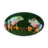 Frog Car Magnets