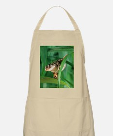 Red-legged pan frog Apron