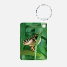 Red-legged pan frog Keychains