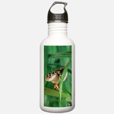 Red-legged pan frog Water Bottle