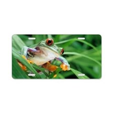 Red-eyed tree frog Aluminum License Plate