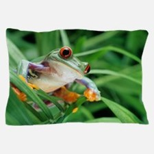 Red-eyed tree frog Pillow Case