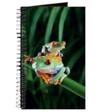 Red-eyed tree frogs Journal
