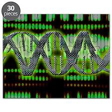 DNA helix Puzzle