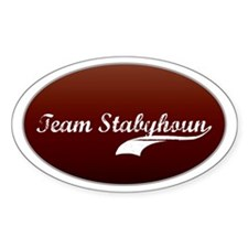 Team Stabyhoun Oval Decal