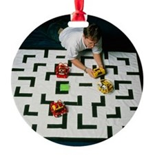 Researcher testing Lego robots play Ornament