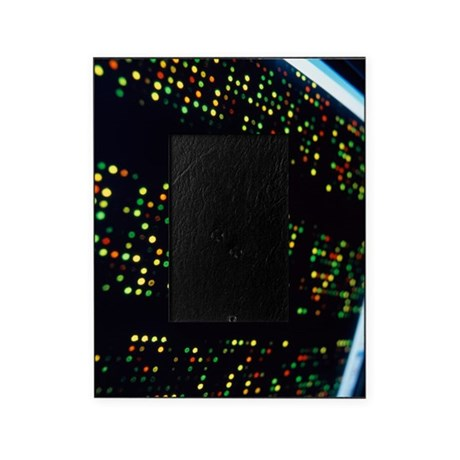 DNA microarray Picture Frame